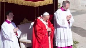 Papa, Palmiye Pazarı ayininde, Germanwings uçak kazasında ölenler için dua etti