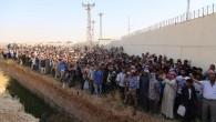 IŞİD'den kaçan 2800 kişi Türkiye'de