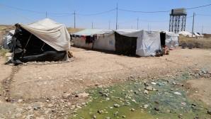 Sığınmacıların sıcak çilesi