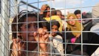 15 günde 20 bin kişi Türkiye'ye sığındı