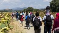 Çek Cumhuriyeti Hristiyan Mültecileri Kabul Etmekten Vazgeçti