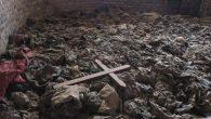 Katolik Kilisesi Ruanda'dan Özür Diledi