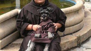 Fransisken Kıyafetli Köpek İlgi Odağı Oldu