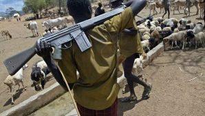 Fulani Çobanlar, 20 Hristiyanı Uykularında Öldürdü