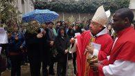 İstanbul Kutsal Ruh Katedrali'nde Palmiye Pazarı Ayini