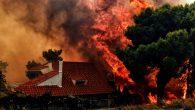 Yunanistan'da Orman Yangınında Ölü Sayısı 80'e Yükseldi