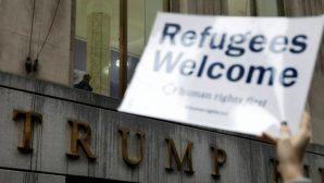 Evanjelik Hristiyanlar, Hristiyan Mülteciler İçin Endişeli