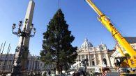 Aziz Petrus Meydanı'nda Noel Hazırlığı