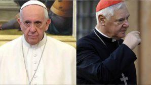 Kardinal Müller'den Papa Françesko'ya Manifesto