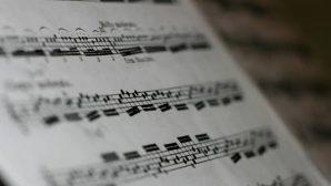 Müziğin Evrensel Olduğu Kanıtlandı