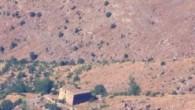 Hakkari'de damında ağacın yeşerdiği kilise