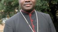 """Nijerya Başpiskoposu Kaigama: """"Batı, Boko Haram'ı görmezden geliyor"""""""