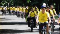 "Saraybosna'da ""bisikletli"" Guinness rekoru"