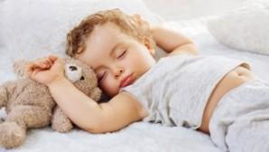 Uykuyu düzenleyen gen bulundu