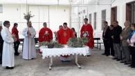 Katolikler İsa'nın Yeruşalim'e Girişini Kutladı