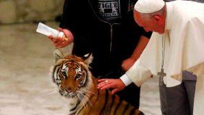 Papa, Merhamet Yılı Kutlamalarında Sirk Çalışanlarını Ağırladı
