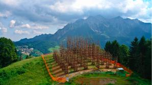 İtalya'nın Ağaç Katedrali Yavaş Yavaş Büyüyor