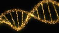 """""""Tanrı İnancı Genlerimizde Var"""""""