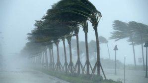 Kasırgalar ABD'de Büyük Tahribat Yarattı