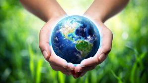 """Kutsal Kitap Doğrulandı: """"Hayvanların Yüzde 90'ı İnsanlarla Birlikte Yeryüzüne Geldi"""""""
