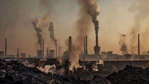 Dünya Kaynakları Bu Yıl Rekor Düzeyde Tüketildi