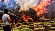 Yunanistan'daki Katolik Liderler Ülkede Meydana Gelen Orman Yangınlarından Ders Almaya Çağırdı