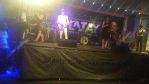 Altınözü-Sarılar Summer Festival was held with much entertainment