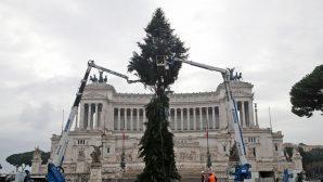 Sponsorlu Noel Ağacı Tartışma Yarattı