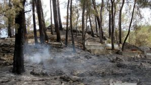Several Large Fires Broke Out In Southeast Turkey In Assyrian Deyrulzafaran Monastery