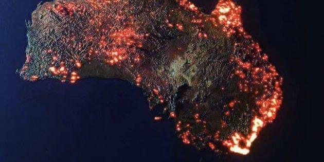 Avustralya Yanıyor: 480 Milyon Hayvan Yanarak Can Verdi