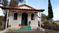 Ortodoks Kiliseler, Mültecilerle Mücadele Ediyor