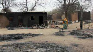 Nijerya'da Gerçekleşen Saldırıda En Az 80 Kişi Hayatını Kaybetti