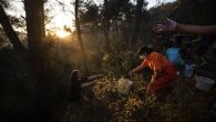 Heybeliada'da İnsan Zinciri: Yangına Karşı Seferber Oldular
