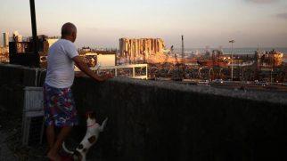 World Vision Lübnan Direktörü: Ülkede Her Şey Paramparça Oldu