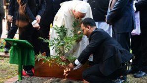 Papa Françesko: ''Yaratıcıyla Barış, Yaratılışla Uyum İçinde Yaşamalıyız''