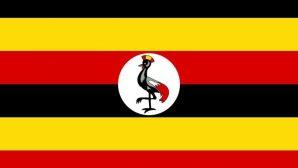 Ugandalı Pastör, Aşırılık Yanlılarının Saldırısına Uğradı