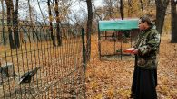 Rus Rahip, Vahşi Hayvanlar İçin Yardım Merkezi Kurdu